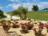 <h5>Golf Course</h5>